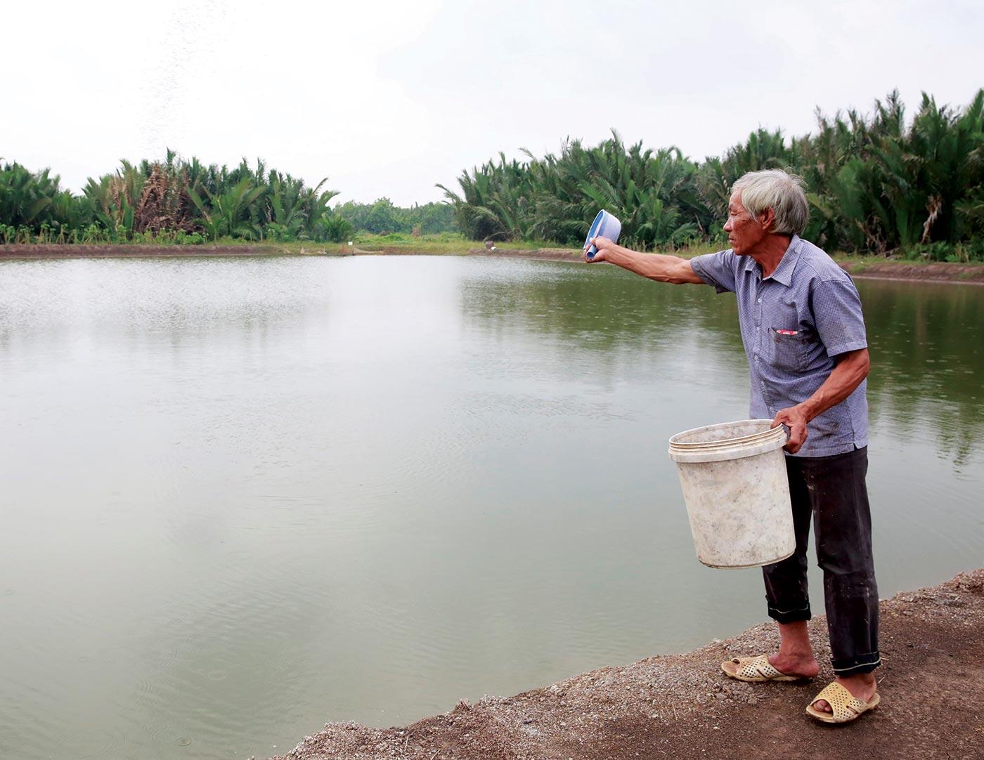 Chú Trương Văn Tập (xã Hiệp Phước, huyện Nhà Bè, TP.HCM) chăm sóc ao tôm từ nguồn vốn được Quỹ Vì người nghèo Huyện Nhà Bè hỗ trợ
